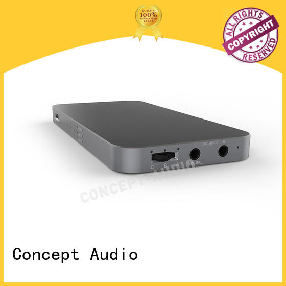 aluminum Type C adaptor with dip switch for sale Concept Audio