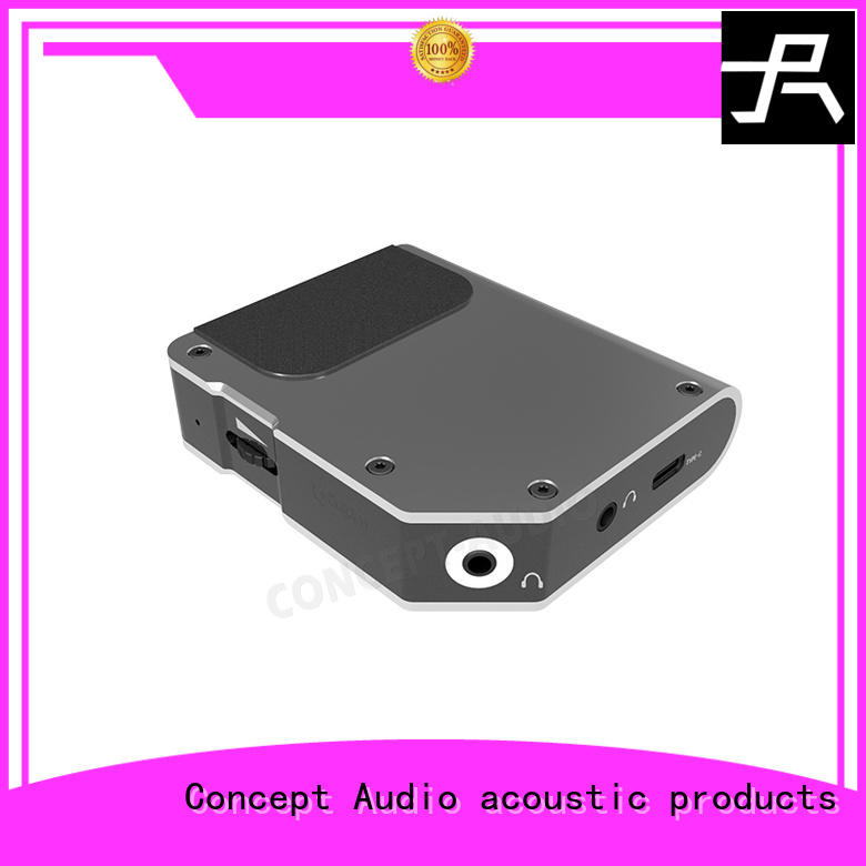 powerful bass custom media player Concept Audio manufacture